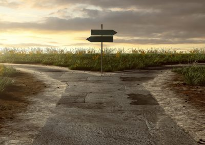 Lebenspläne, Ablösung, Perspektiven – Übergang von der Jugend zum Erwachs