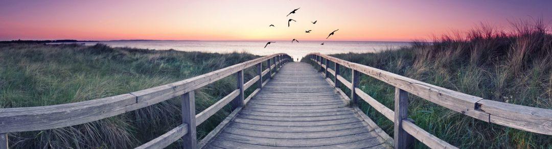 »Selbsthilfe für die Seele« – Verschiedene Modelle der Psychoedukation