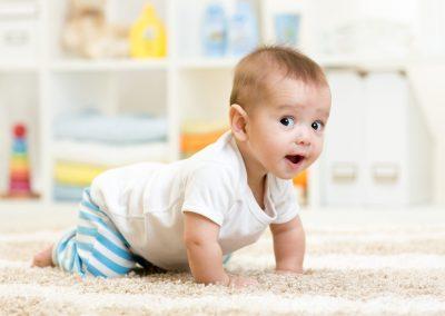 Regulationskompetenzen des Babys und feinfühlige Unterstützungsangebote der Eltern